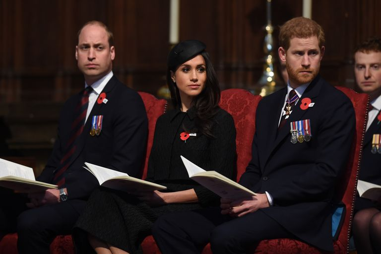 Princes Harry and William and Meghan